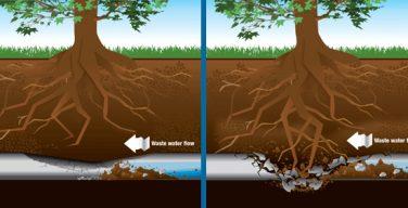 sewer-problem